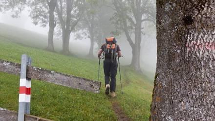 Getrübte Wanderidylle: Ein Wanderhelfer verletzte sich am Sonntag bei einem Streit. (Symbolbild)
