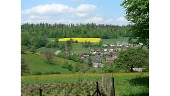 Die Gemeinde Ammerswil