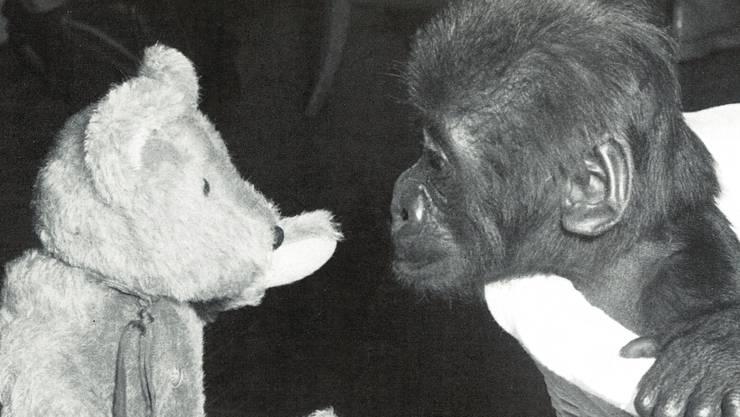 Da war Goma noch ein Baby – und wuchs bei der Familie von Zolli-Direktor Lang auf.