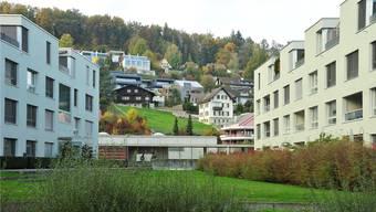 Mit dem Einbezug des ganzen Gebiets links der Aare, so etwa auch des Aareparks und des Hungerbergs (Bild) gewinnt der Quartierverein an Gewicht. Ueli Wild
