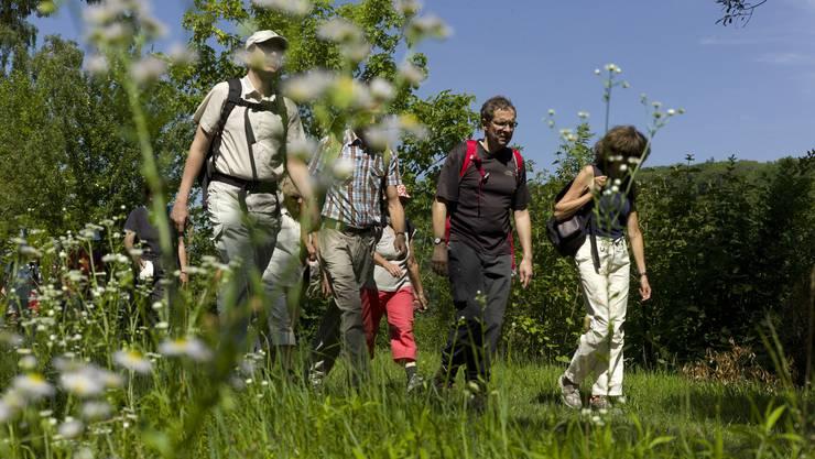 So schön war die erste Etappe des az-Leserwanderns von Aarau nach Lenzburg