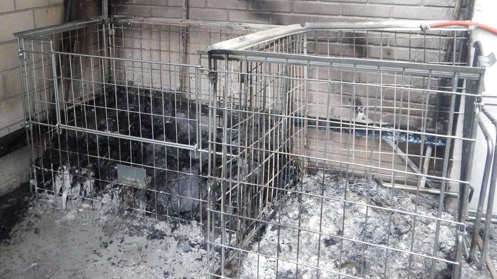 Brandstiftung vermutet: Paletten brennen in der Nacht nieder