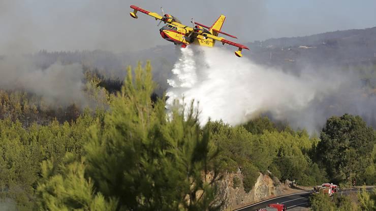 Grosseinsatz für die Löschkräfte: Das Feuer wütete bei Sintra, vor den Toren Lissabons.