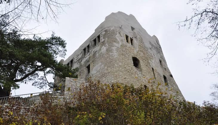Die Ruine Homburg liegt 30 Minuten zu Fuss von Läufelfingen entfernt. Jederzeit ist sie für Besucher zugänglich und seit einiger Zeit nach langer Restaurierung wieder vollständig zu bewundern. Vom dreistöckigen Wohnturm aus hat man einen tollen Blick über das Homburgertal.