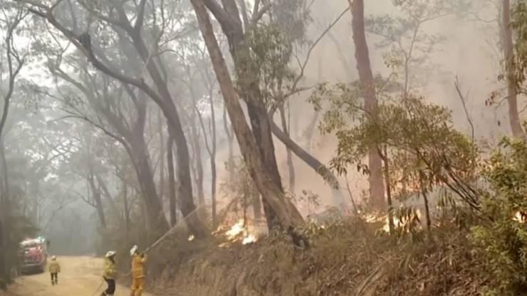 Freiwillige Helfer kämpfen Kurrajong Heights in New South Wales, gegen die Flammen. (Archivbild)