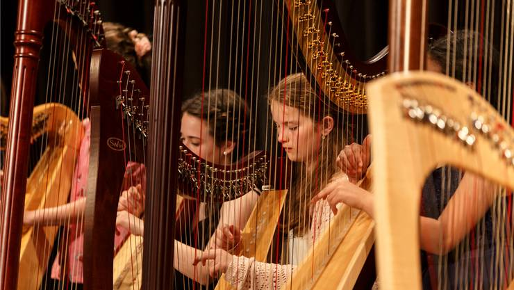 Die Harfe ist ein vielseitiges Instrument, obwohl der Unterricht nur selten in den Musikschulen angeboten wird.