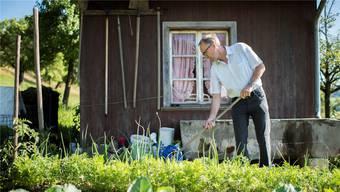 Peter Hegglin, CVP-Ständerat und ehemaliger Finanzdirektor des Kantons Zug, arbeitet an seinem freien Abend gern im Garten.Ennio Leanza/keystone