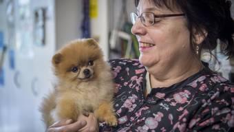 «Blacky» macht sie alle schön: Der älteste Hundesalon Dietikons