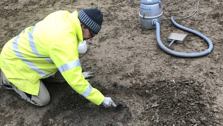 Rolf Jeltsch, Mitarbeiter der Kantonsarchäologie, legt in Lupfig die bronzezeitliche Feuerstelle frei.