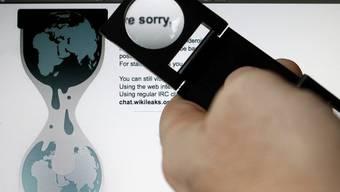 Server von Wikileaks wegen Hackerversuchen stillgelegt