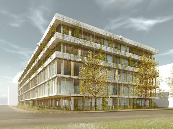 Die Architekten Kunz und Mösch haben mit dem Projekt «Belo Horizonte» den Wettbewerb für den Neubau des Schweizerischen Tropen- und Public Health-Institut (TPH) gewonnen. Der Rohbau mit einer Nutzfläche von 13500 Quadratmetern steht, der Umzug aus der Stadt ist für Ende des kommenden Jahres geplant.