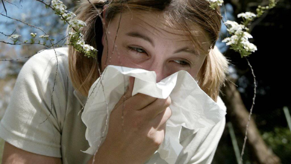Ein Mädchen putzt sich die Nase. Niesende und schniefende Allergiker sind zu dieser Jahreszeit wieder häufiger im Strassenbild zu beobachten. Jeder Fünfte Mensch in der Schweiz zeigt allergische Symptome. (Symbolbild)