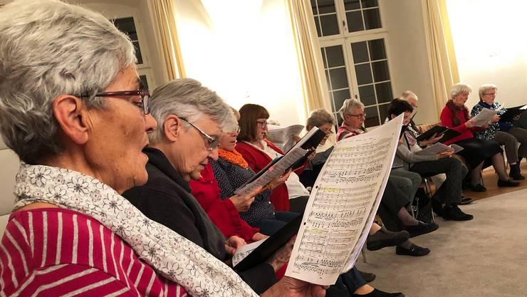 Chorweekend des Ökumenischen Kirchenchors Urdorf auf der Musikinsel Rheinau  Foto Christian Murer