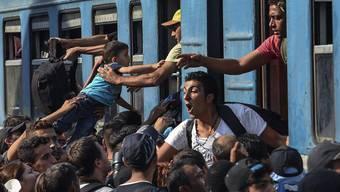 Der Zürcher Kantonsrat hat zusätzliche humanitäre Hilfe in den Ursprungsländern der Flüchtlinge abgelehnt.