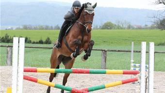 Petra Stierli vom Kavallerieverein Limmattal bei einer Springprüfung.