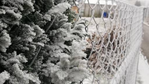 Weisses St.Gallen – doch es ist gar kein Schnee
