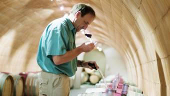 Die Weinproduktion unterliegt strengsten Bestimmungen, die von Kontrolleuren überprüft werden. (Archivbild)