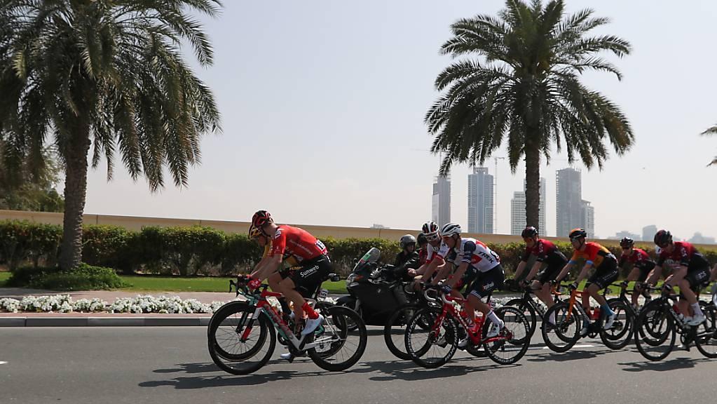 Viel Sonne und Palmen: Die Radprofis starten am Persischen Golf in die neue World-Tour-Saison