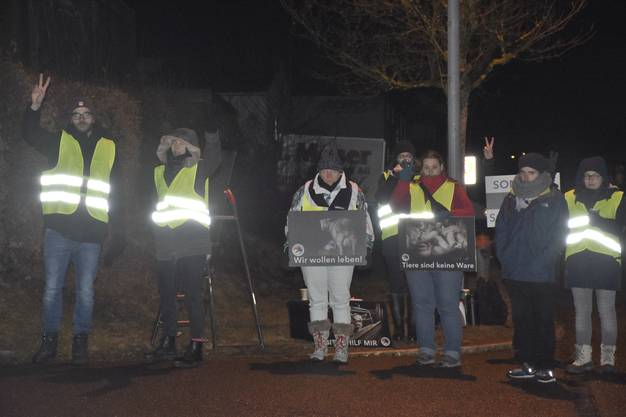 Die Mitglieder der internationalen Organisation «The Save Movement» haben zum ersten Mal eine lokale Mahnwache in Wohlen veranstaltet.