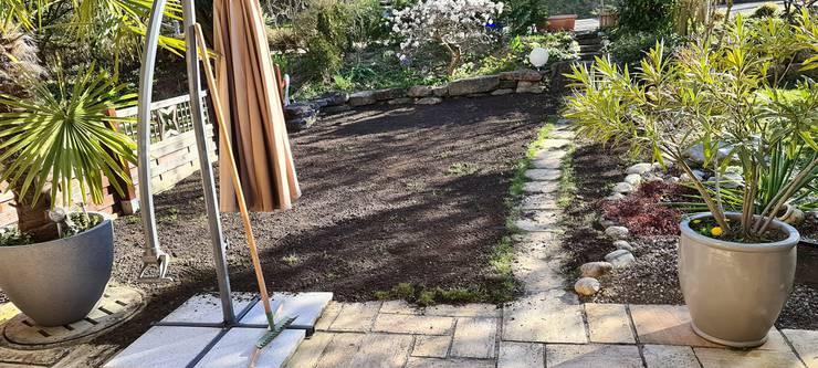 Dieser Leser hat Rasen in seinem schönen Garten gesät.