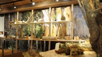 Oscar Bamert, Obmann der Ortsmuseumskommission, sammelt seit vielen Jahren Holzstücke, die er jetzt im Ortsmuseum ausstellt.