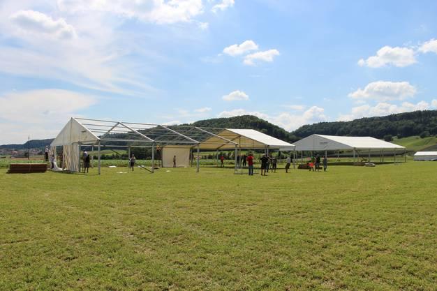 In Remigen findet vom 22. bis 24. Juni das Turnfest statt. Die Aufbauarbeiten auf dem Remiger Büel laufen auf Hochtouren. Knapp 600 Helfer sind für das Turnfest in 1100 Schichten eingeteilt.