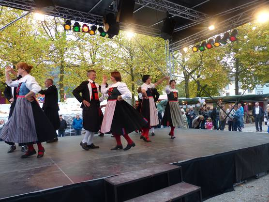 Die Trachtengruppe Waldshut zeigte auf der Bühne ihr Können.  (Ingrid Arndt)