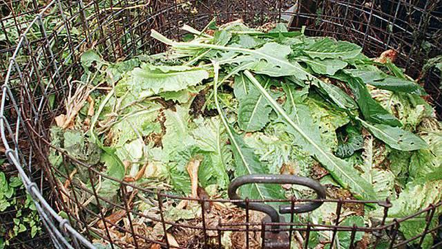 Strenges Kompostgesetz zum Ziel