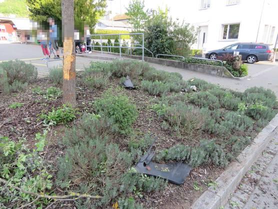 Der Unfallort: Hier prallte der Neulenker gegen den Baum. Er flüchtete, wurde aber wenig später von der Regionalpolizei Zurzibiet gestoppt.
