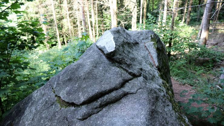 Ein Stück Rücken fehlt: Der Elefantenstein in Birmenstorf.