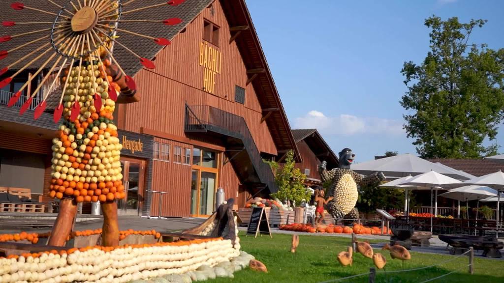 Ausstellung: Bächlihof in Rappi-Jona zeigt Kürbisfiguren