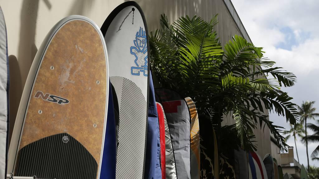 Get Crazy auf Hawaii: Das sind unsere Halbfinalisten!