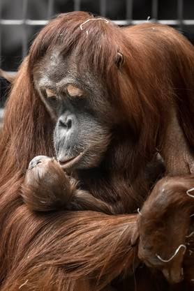 Cahaya mit ihrer Tochter Utu.