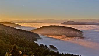 Die Aussicht vom Hasenberg aufs Limmattal – bald gibt es hier einen Aussichtsturm.