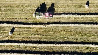 Die Landwirtschaft braucht keinen Kurswechsel, findet Bundesrat Johann Schneider-Ammann. Das Stimmvolk gab ihm recht.