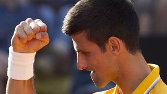 Novak Djokovic: auf höchster Stufe seit 36 Einzeln unbesiegt