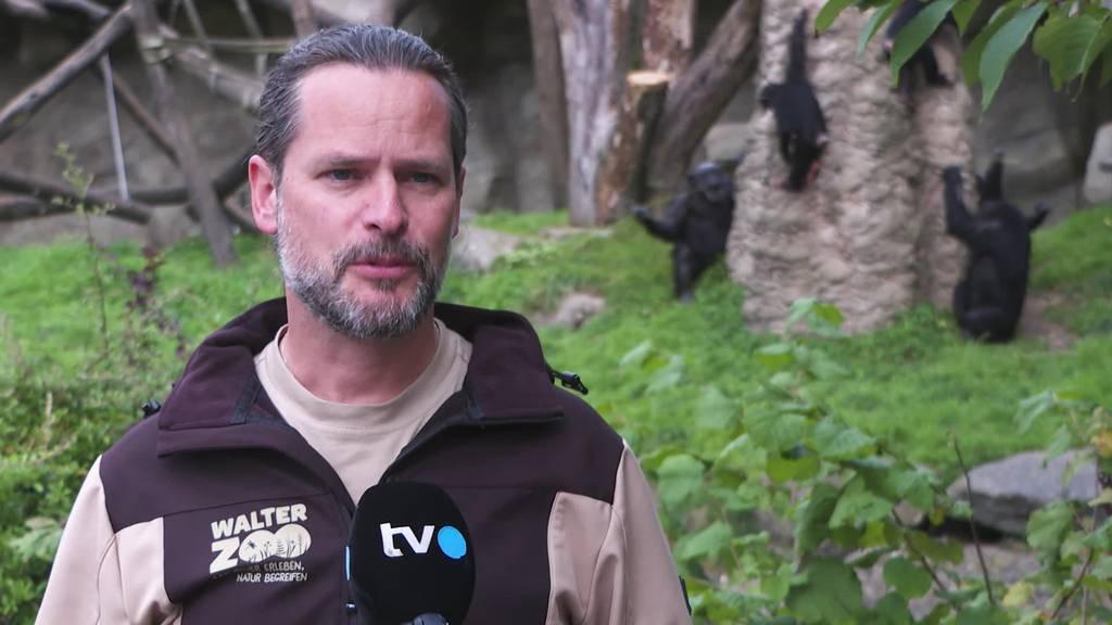Reaktion: Walter Zoo befürchtet weniger Gäste