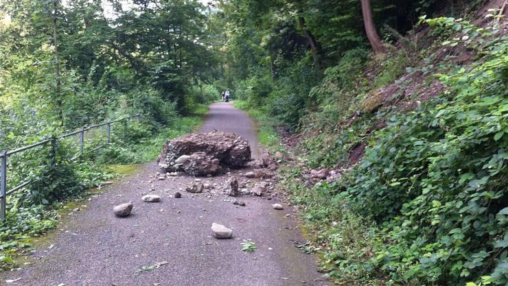 Der heruntergefallene Fels bei der Limmatpromenade