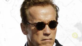 Arnold Schwarzenegger hat derzeit nichts zu lachen (Archiv)