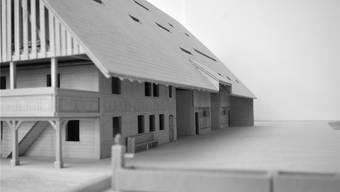Im Bauernhaus an der Dorfstrasse werden 13 Wohnungen eingebaut.