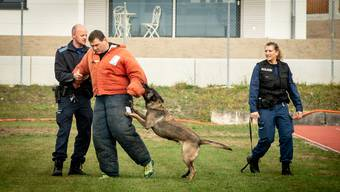 Gin Polizeihundeprüfung Solothurn