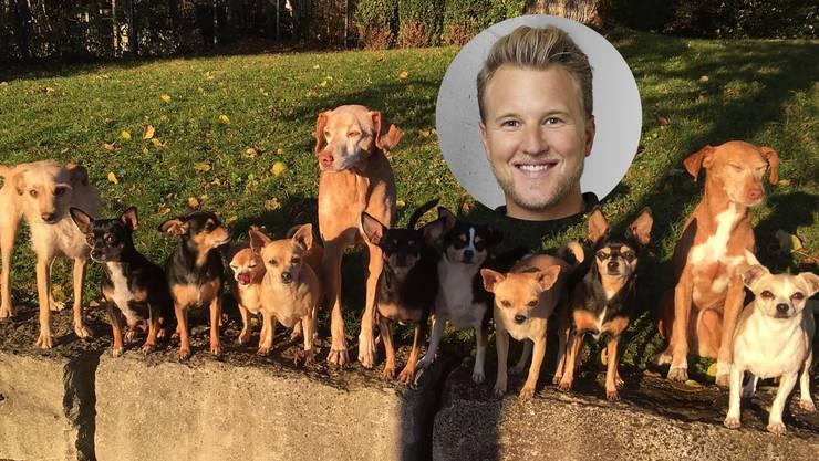 Felix, «der Glückliche»: Am Beispiel seines Hundes (der grosse in der Bildmitte) erläutert Felix Bertram die Bedeutung der Seelen-Pflege im Heilungsprozess.