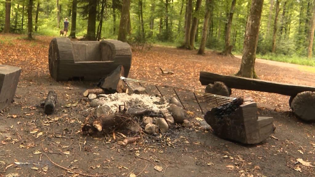 Vandalen zerholzen Sitzbänke im Bremgartenwald
