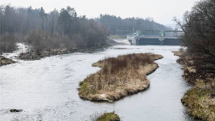 Genug Restwasser im Aarelauf, genutzt mit Dotierturbine beim Kraftwerk Rupperswil-Auenstein. Toni Widmer