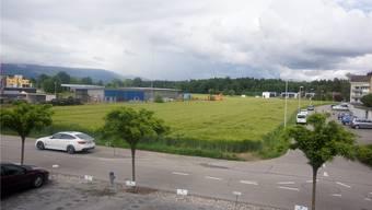 Zielmatten: Auf dem Gewerbeland plant die Moser Maschinen und Immobilien AG Gewerbebauten, die sie weitervermieten will.