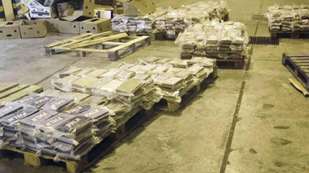 Rekord-Kokainfund – Drogen von Millionenwert beschlagnahmt