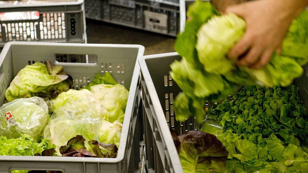 Nationalrat will Lebensmittelverluste bekämpfen