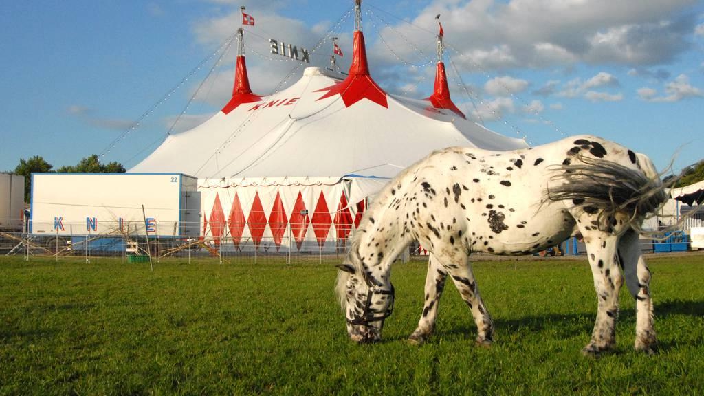 Zirkus Knie mit Jubiläumsshow in Luzern