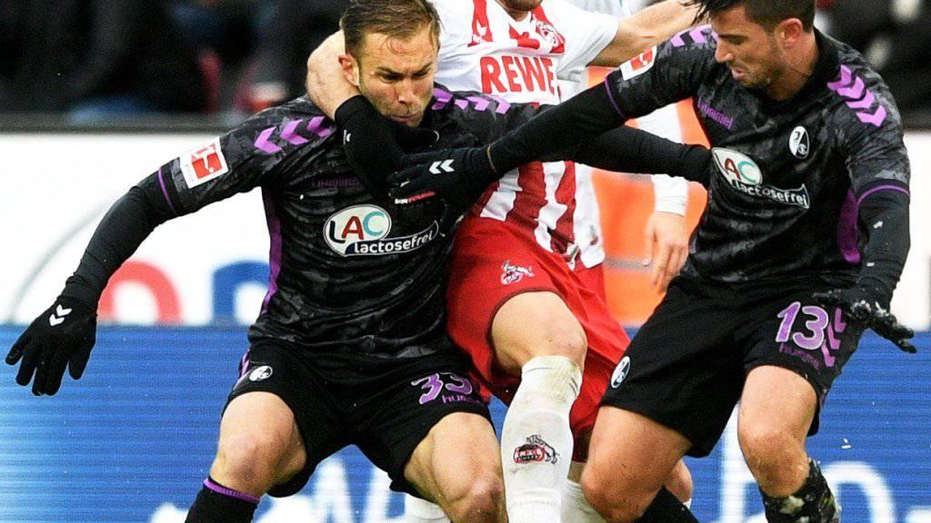 Stemmte sich am Ende erfolglos gegen die Niederlage gegen Freiburg: der 1. FC Köln (mit Milos Jojic, im weissen Dress)