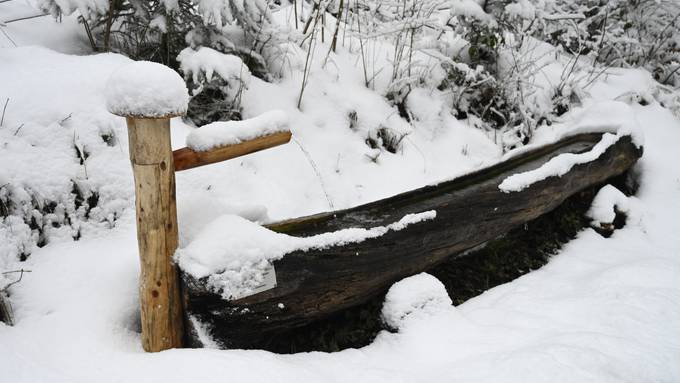 Wintereinbruch Grenchen